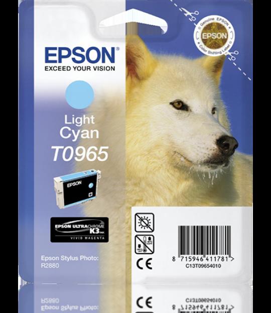 Epson Light Cyan R2880