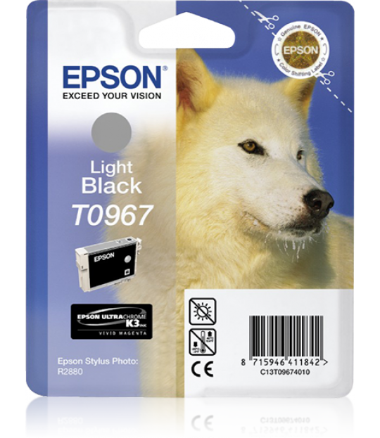 Epson Light Black R2880